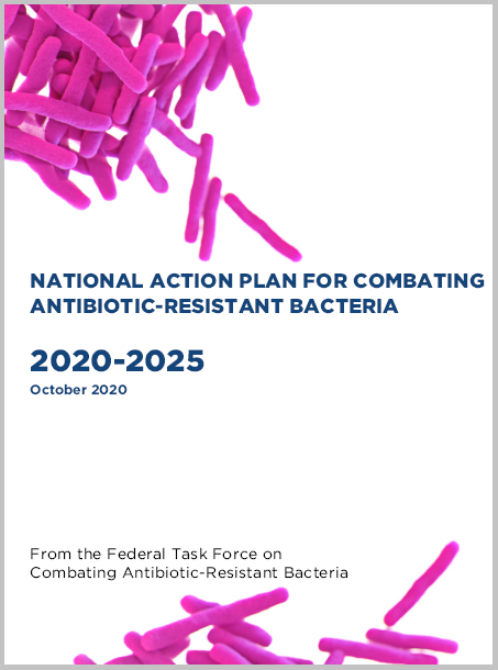 An image of new National Action Plan cover.